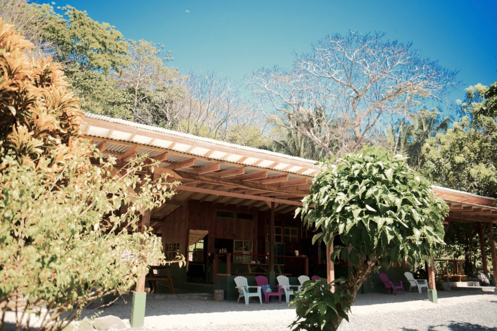 costa rica surf and yoga camp